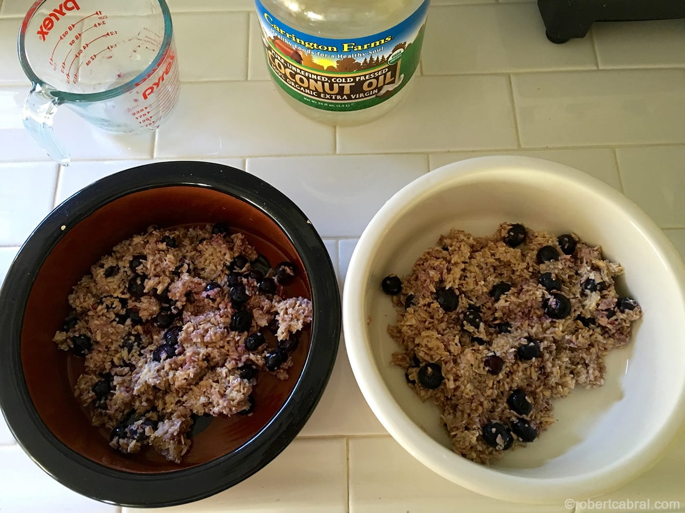 oatmeal breakfast for dogs