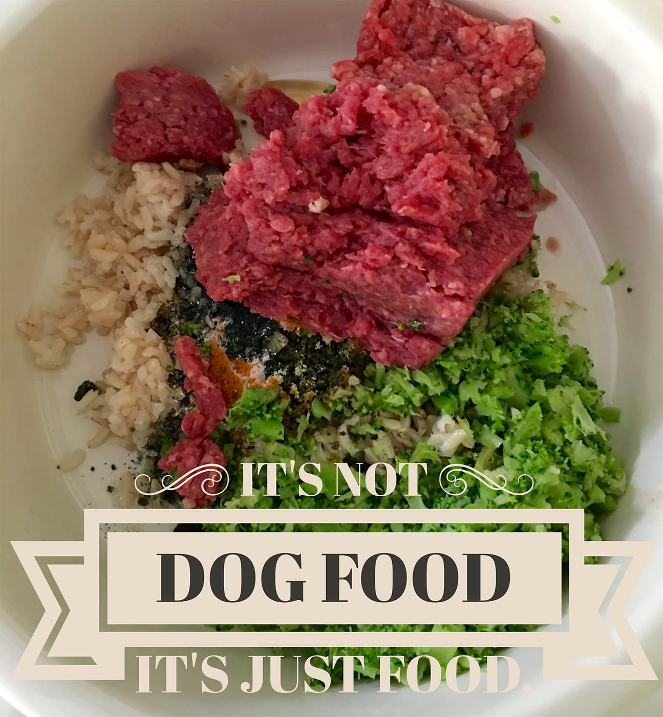 Dog Food for optimum health