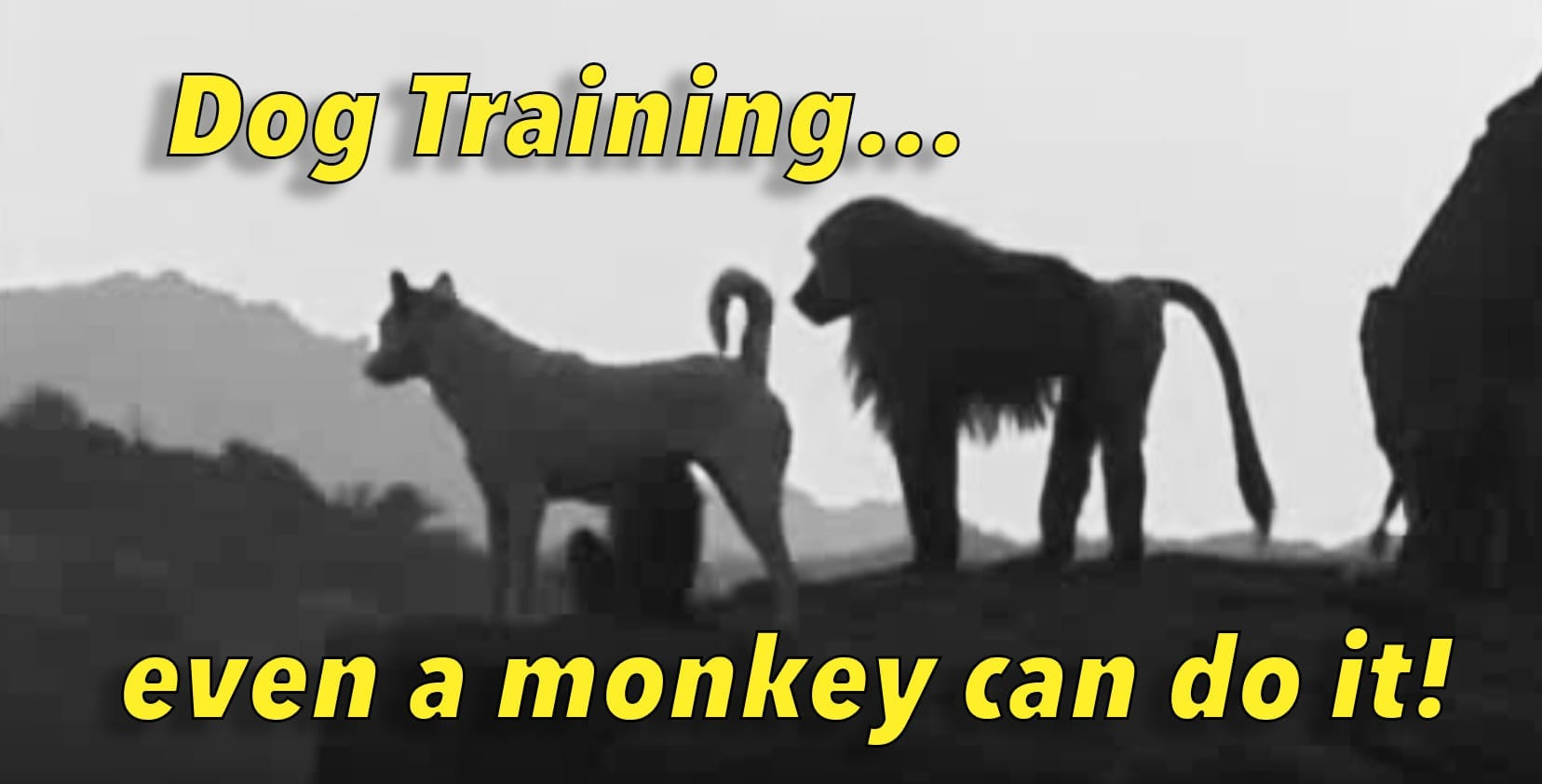 Dog Training - Even a Monkey Can Do It