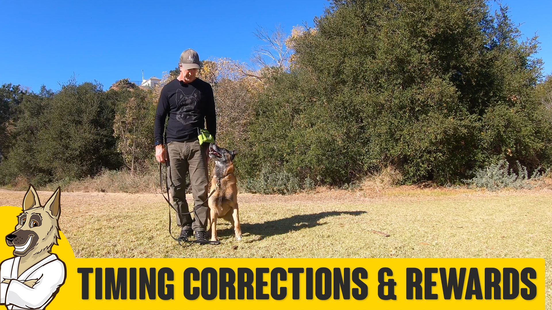 Timing Corrections and Rewards in Marker Training