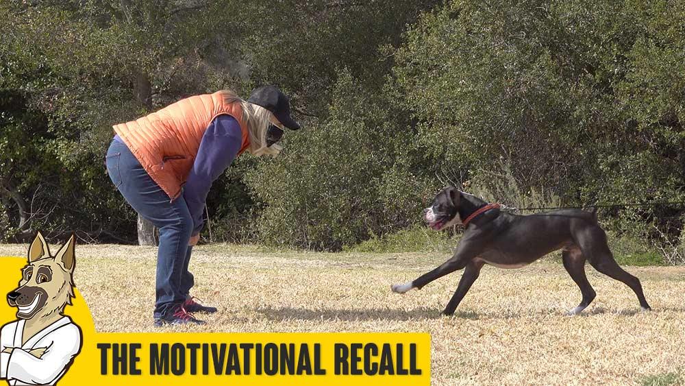 Motivational Recall Basics